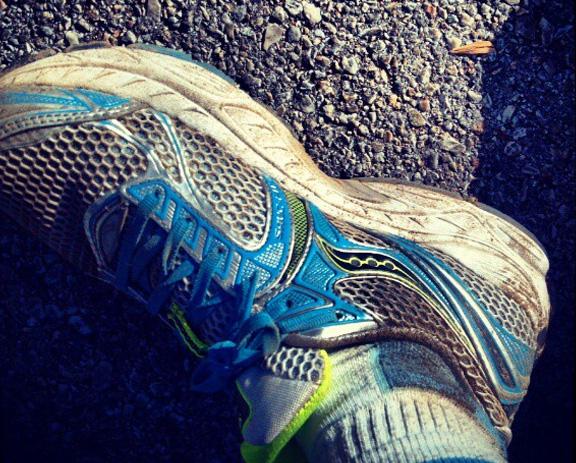 Trail dirt!